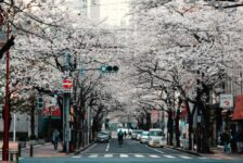 Best cities to study in Japan - Tokyo